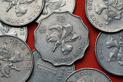 Monete di Hong Kong Immagine Stock