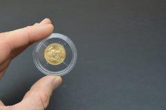 Monete di oro in capsule di plastica Fotografia Stock