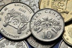 Monete di Singapore Fotografia Stock Libera da Diritti