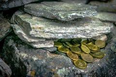 Monete dorate in Dwayne Johnson fotografia stock libera da diritti