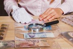 Monete e banconote raccoglibili nelle cellule e nella lente d'ingrandimento Fotografie Stock