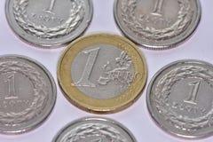 Monete EUR e PLN Fotografia Stock Libera da Diritti