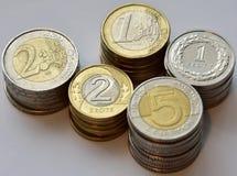 Monete EUR e PLN Immagine Stock Libera da Diritti
