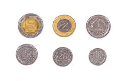 Monete polacche Immagine Stock