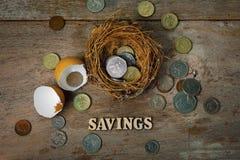 Monete sparse con gli alfabeti di legno e guscio d'uovo per contare e Immagini Stock