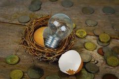 Monete sparse con gli alfabeti di legno e guscio d'uovo per contare e Fotografia Stock Libera da Diritti