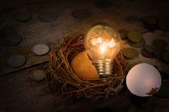Monete sparse con la lampadina e Eggshel per contare ed il concetto finanziario Fotografia Stock Libera da Diritti