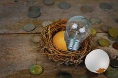 Monete sparse con la lampadina e Eggshel per contare ed il concetto finanziario Immagini Stock