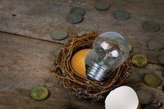 Monete sparse con la lampadina e Eggshel per contare ed il concetto finanziario Immagine Stock Libera da Diritti
