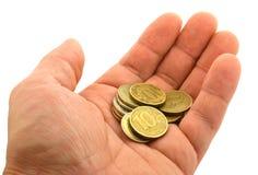 Monete sulla palma Immagine Stock Libera da Diritti
