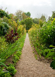 Monets Garten lizenzfreie stockfotografie