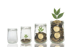 Monety i roślina w butelce, Biznesowej inwestyci przyrost Zdjęcia Royalty Free