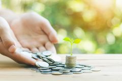Monety wzrostowe do zysku pojęcia finanse i inwestycji fotografia stock