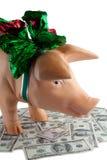 The Money Royalty Free Stock Photo