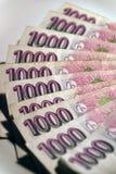 Money #2. A batch of CZK (Czech Koruna), 1000 CZK bills Stock Images