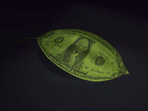 Money 3d Stock Image