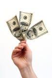 Money. Hand holding dollars notes royalty free stock image