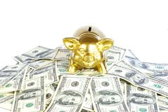 Money. Gold piggy bank on a dollars stock images