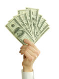 Money. In hands on white Royalty Free Stock Photo