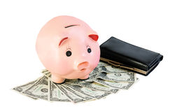 Money accumulation concept. Money and piggy bank isolated Stock Image