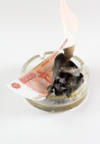 Money in an ashtray burns Royalty Free Stock Images