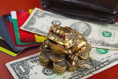 Money attracts money frog. Royalty Free Stock Photography