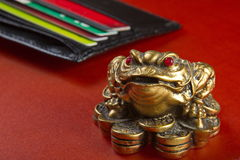 Money attracts money frog. Royalty Free Stock Photo