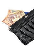 Money bag. Indian money coming out of bag Stock Photography