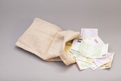 Money bag with euro. Isolated on gray background Royalty Free Stock Images