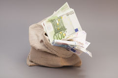 Money bag with euro Royalty Free Stock Photo