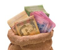 Money bag with hryvna Royalty Free Stock Image