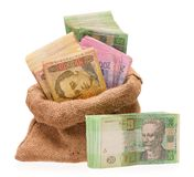 Money bag with hryvna Royalty Free Stock Photo