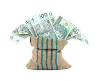 Money in the bag isolated Royalty Free Stock Photography