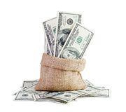 Money in the bag Stock Photography