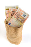 Money in the bag Royalty Free Stock Image