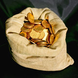 Money bag. Money sack bag with golden coins savings Stock Photos