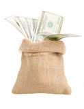 Money in  bag Royalty Free Stock Images