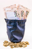 Money in the bag Stock Images