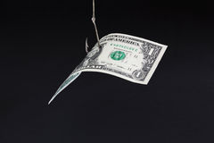 Money Bait Royalty Free Stock Images