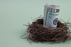 Money in bird nest. Roll of paper bills or money in a bird nest.  Theme:  Financial nest egg Royalty Free Stock Photos