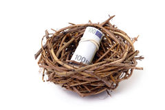 Money in bird's nest Royalty Free Stock Image