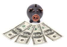 Money and black piggy bank Stock Photos