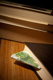 Money in the book Royalty Free Stock Photo