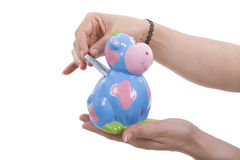 Money box. A money box with the shape of a cow Stock Images