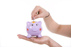 Money box. Piggy bank and hand with coin isolated on white background Stock Images