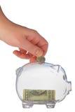 Money-box. Money box in form transparent plastic pig Stock Image