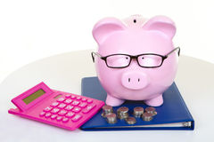 Money-box and business. The pink pig bank and documents and coins royalty free stock images