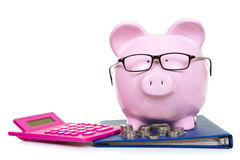 Money-box and business. The pink pig bank and documents and coins stock images