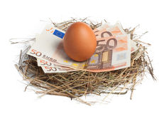 Money and brown egg in nest Royalty Free Stock Photo