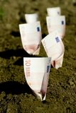 Money buried in ground Stock Image